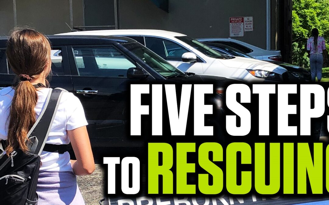 Five Steps to Rescuing: An Activist's Guide to Saving Lives